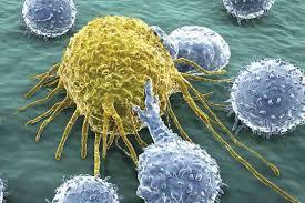 پاورپوینت ایمونولوژی سرطان